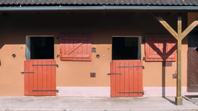 stable and horses